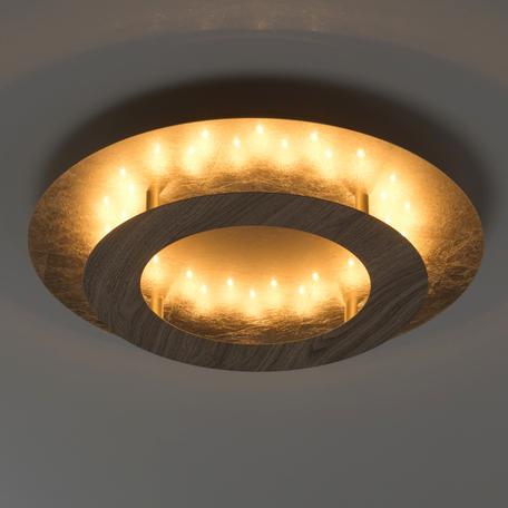 Потолочный светодиодный светильник De Markt Иланг 712011101, LED 18W, 3000K (теплый), матовое золото, коричневый, металл