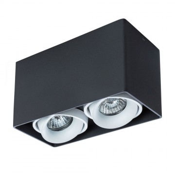 Потолочный светильник Arte Lamp Instyle Pictor A5654PL-2BK, 2xGU10x50W, черный, белый, металл
