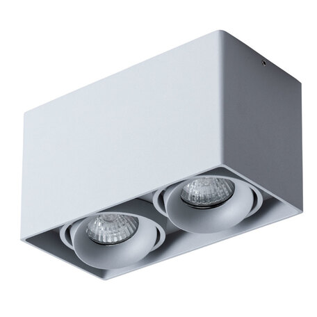 Потолочный светильник Arte Lamp Instyle Pictor A5654PL-2GY, 2xGU10x50W, серый, металл