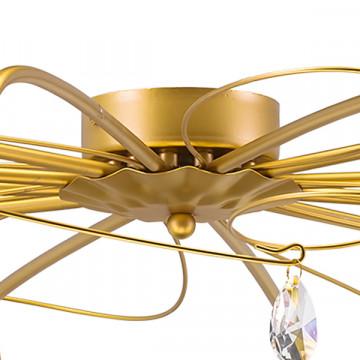 Потолочная люстра Lightstar Aereo 711121, 12xG9x25W, матовое золото, прозрачный, металл, стекло, хрусталь - миниатюра 3