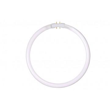 Люминесцентная лампа Lucide 50105/32/33 G10qCircularT5 32W 4000K (дневной)