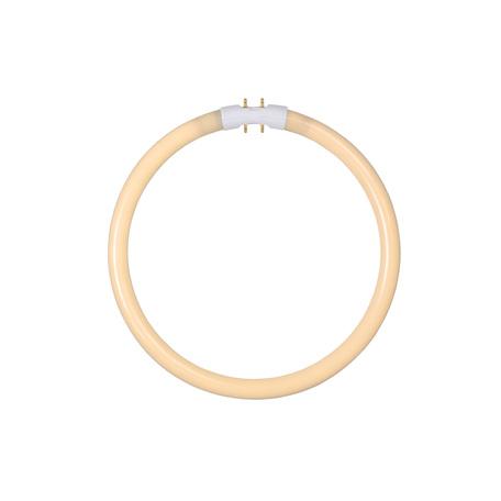 Люминесцентная лампа Lucide 50105/22/31 кольцо G10qCircularT5 22W, 2700K (теплый) 220V, гарантия 30 дней