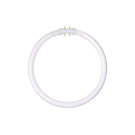 Люминесцентная лампа Lucide 50105/22/33 кольцо G10qCircularT5 22W, 4000K (дневной) 220V, гарантия 30 дней