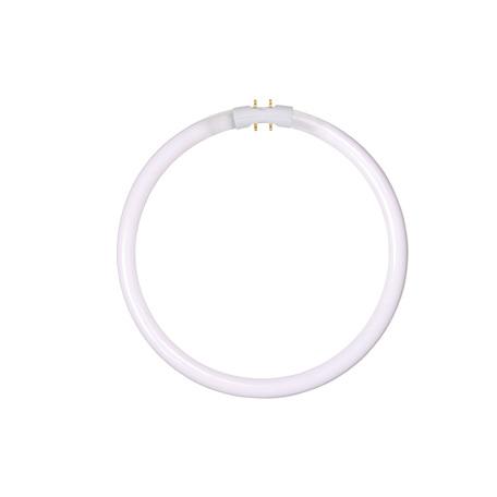 Люминесцентная лампа Lucide 50105/32/33 кольцо G10qCircularT5 32W, 4000K (дневной) 220V, гарантия 30 дней - миниатюра 1