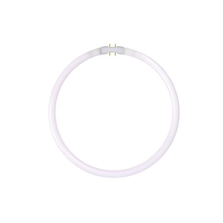 Люминесцентная лампа Lucide 50105/40/33 кольцо G10qCircularT5 40W, 4000K (дневной) 220V, гарантия 30 дней