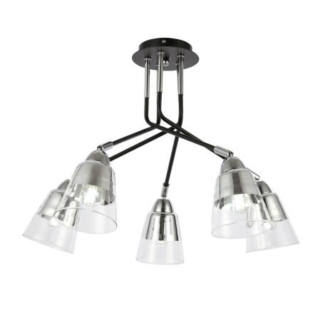 Потолочная люстра с регулировкой направления света Evoluce Lirino SLE102902-05, 5xE27x40W, черный, прозрачный, металл, стекло