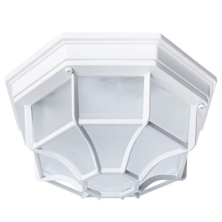 Потолочный светильник Arte Lamp Pegasus A3100PL-1WH, IP65, 1xE27x100W, белый, металл, металл со стеклом
