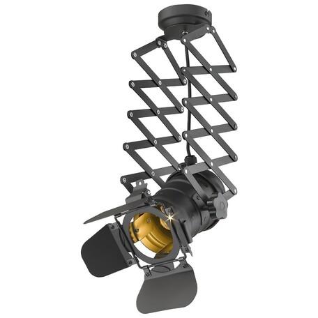Потолочный светильник на складной штанге Wertmark Lenken WE290.01.007, 1xE27x60W, черный, металл