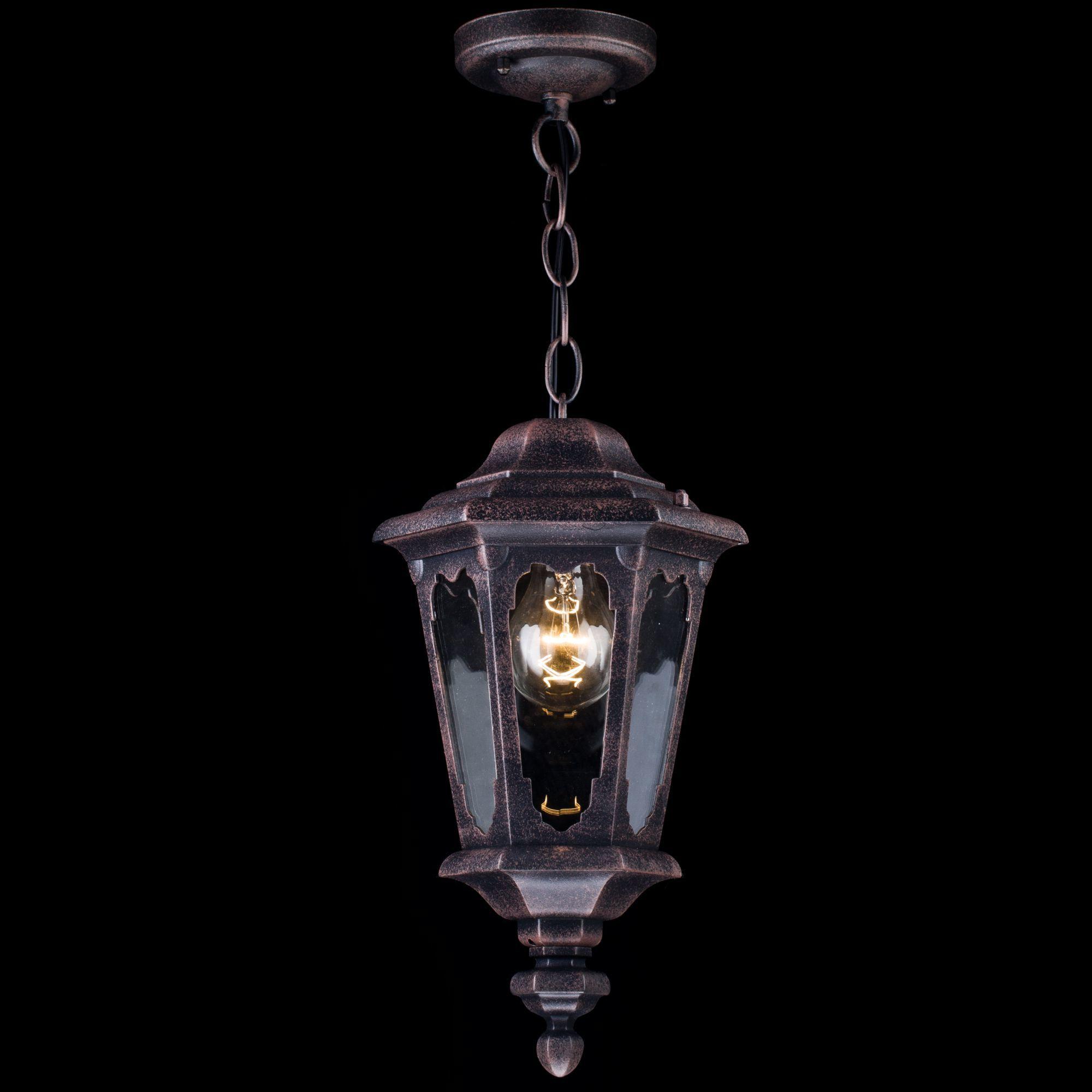 Подвесной светильник Maytoni Oxford S101-10-41-B, IP44, 1xE27x60W, черный, прозрачный, металл, стекло - фото 4