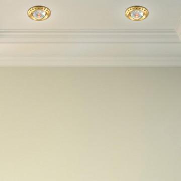 Встраиваемый светильник Novotech Spot Glam 369648, 1xGU5.3x50W, золото, прозрачный, металл с хрусталем, хрусталь - миниатюра 2