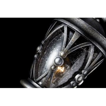 Садово-парковый светильник Maytoni Rua Augusta S103-59-31-B, IP44, 1xE27x60W, черненое серебро, прозрачный, металл, металл со стеклом - миниатюра 6