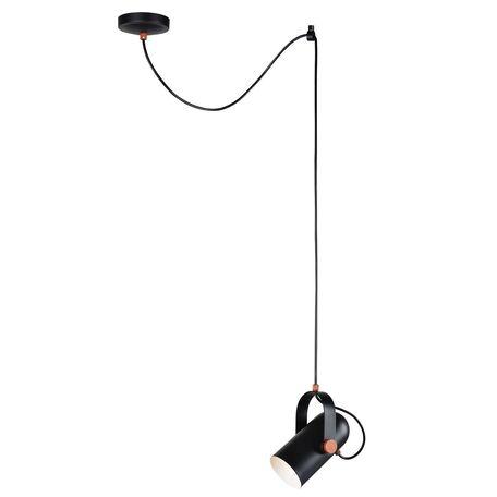 Подвесной светильник с регулировкой направления света Favourite Ampolla 2007-1P, 1xE14x40W, черный, металл