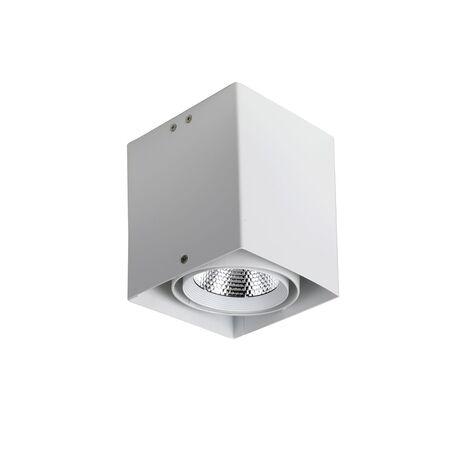 Потолочный светодиодный светильник Favourite FlashLED 1986-1U, LED 12W 4000K CRI>80, белый, металл