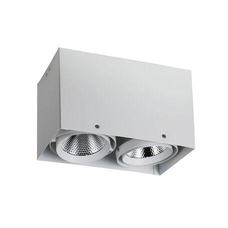 Потолочный светодиодный светильник Favourite FlashLED 1986-2U, LED 24W 4000K CRI>80, белый, металл