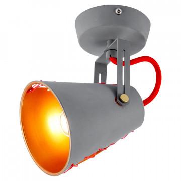 Потолочный светильник с регулировкой направления света Lussole Loft Bethel LSP-8020