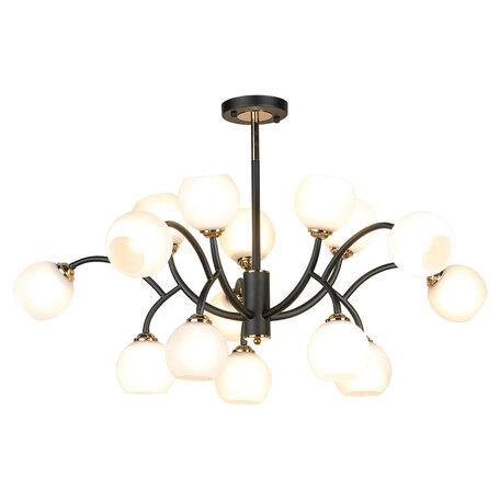 Светильник Lussole Loft Astoria GRLSP-8330, IP21, 15xE14x6W, черный с золотом, белый, металл, стекло