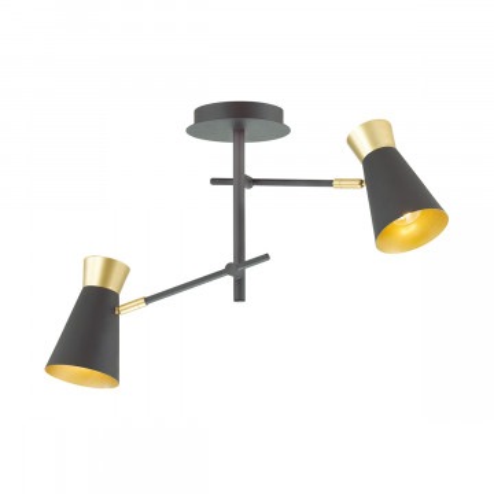 Потолочный светильник с регулировкой направления света Lumion Liam 3790/2C, матовое золото, черный, металл