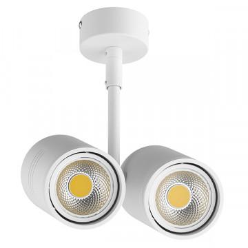 Потолочный светильник Lightstar Rullo 214446, 2xGU10x50W, белый, металл