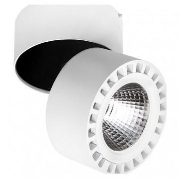 Потолочный светодиодный светильник с регулировкой направления света Lightstar Forte 381364, IP65, LED 35W 4000K (дневной)