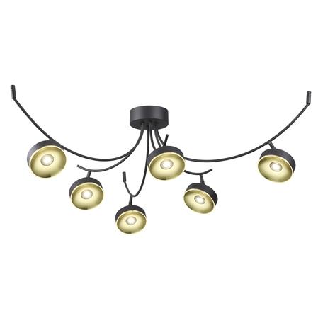 Потолочная светодиодная люстра с регулировкой направления света Odeon Light Fineca 3812/42CL, LED 42W, 3000K (теплый), черный, золото, металл