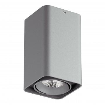 Потолочный светодиодный светильник Lightstar Monocco 052339, IP65, LED 10W, 3000K (теплый), серый, металл