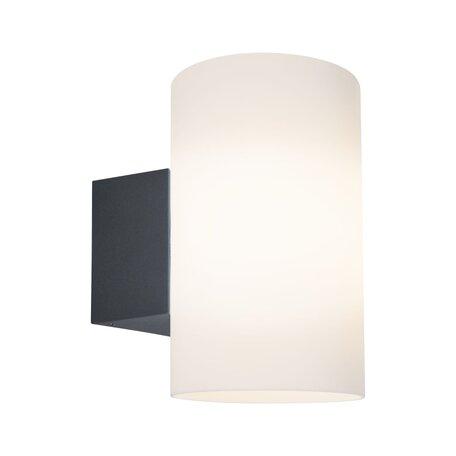 Настенный светильник Paulmann Tube 94186, IP54, 1xE27x15W, черный, белый, металл, пластик