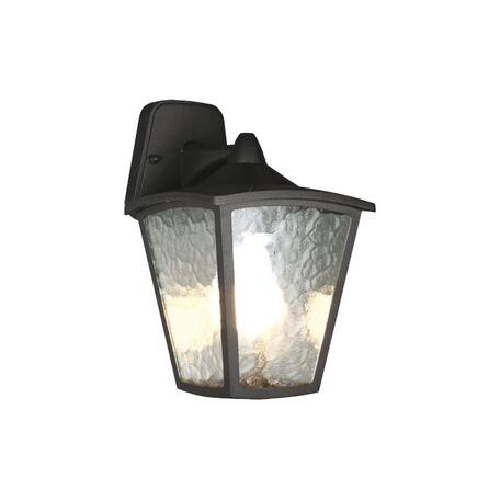 Настенный фонарь Favourite Colosso 1819-1W, IP44, 1xE27x60W, черный, прозрачный, металл, металл со стеклом