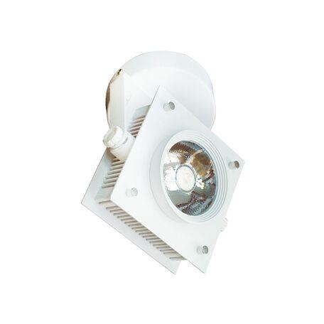Потолочный светодиодный светильник с регулировкой направления света Favourite Projector 1769-1U, IP21, LED 20W, белый, металл
