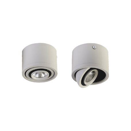 Потолочный светодиодный светильник Favourite Reflector 1774-1C, IP21, LED 5W 400lm CRI>80, белый, металл