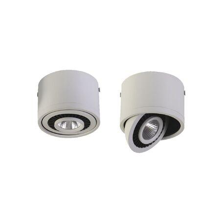 Потолочный светодиодный светильник Favourite Reflector 1776-1C, IP21, LED 12W 960lm CRI>80, белый, металл