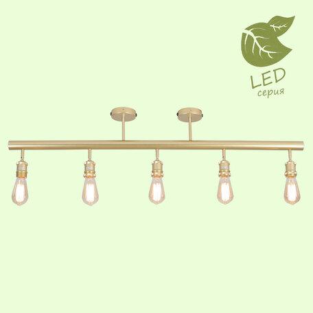Потолочный светильник Lussole Loft Murray GRLSP-8169, IP21, 5xE27x10W, матовое золото, металл