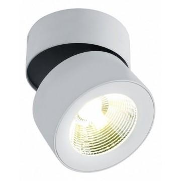 Потолочный светодиодный светильник с регулировкой направления света Divinare Urchin 1295/03 PL-1, LED 10W 4000K 880lm CRI≥80, белый, металл