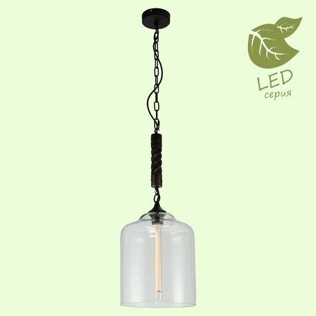 Подвесной светильник Lussole Loft Dix Hills GRLSP-9668, IP21, 1xE27x10W, черный, прозрачный, металл, стекло
