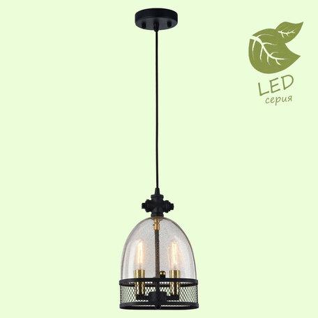 Подвесной светильник Lussole Loft Brighamton GRLSP-9675, IP21, 2xE14x6W, черный, прозрачный, металл, стекло
