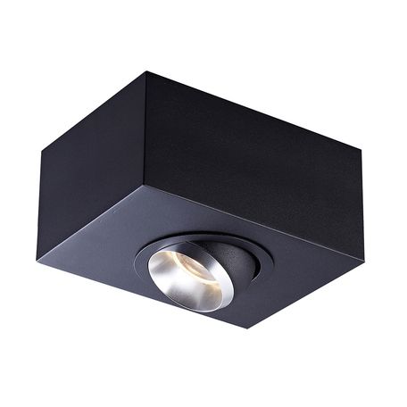 Потолочный светильник Zumaline Mac ACGU10-141