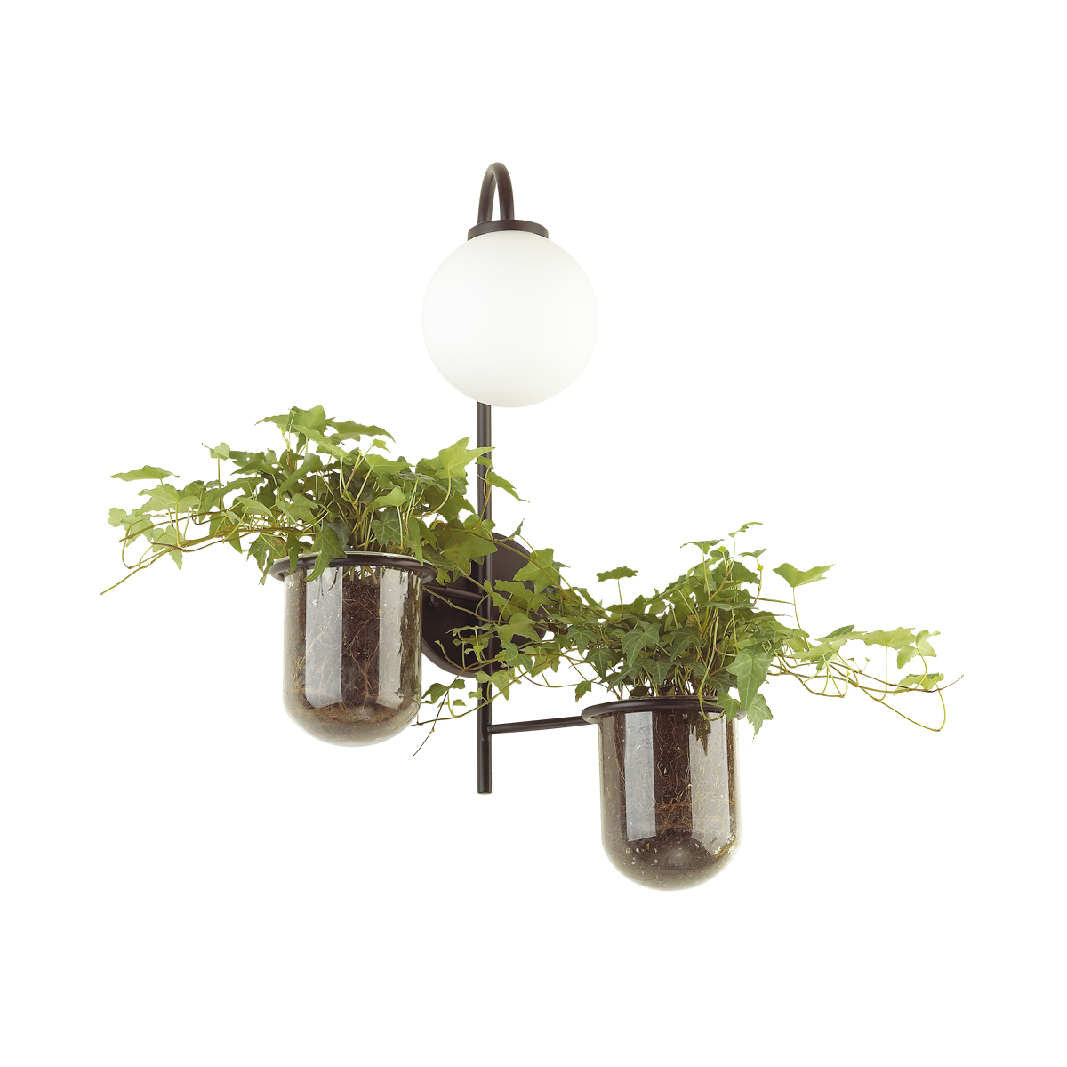 Бра Odeon Light Flower 4681/1W, 1xE14x40W, черный, белый, металл со стеклом, стекло - фото 2