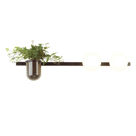 Бра Odeon Light Flower 4681/2W, 2xE14x40W, черный, белый, металл со стеклом, стекло