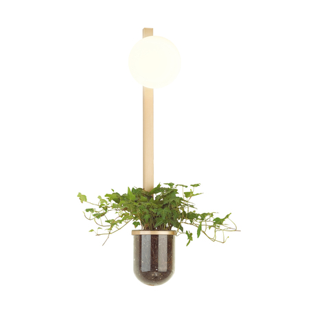 Бра Odeon Light Flower 4682/1WB, 1xE14x40W, золото, белый, металл со стеклом, стекло