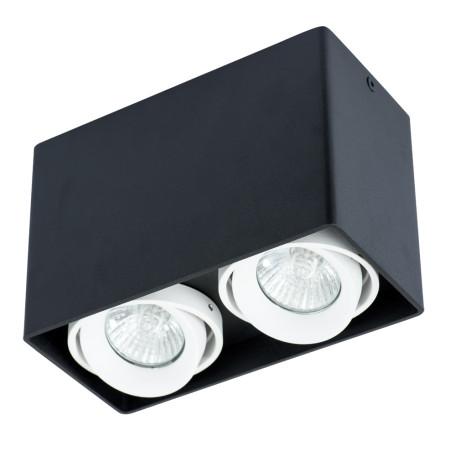 Потолочный светильник Arte Lamp Instyle Pictor A5655PL-2BK, 2xGU10x50W, черный, белый, металл