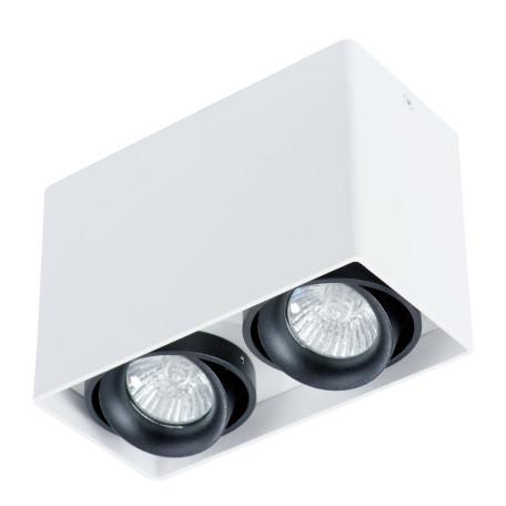 Потолочный светильник Arte Lamp Instyle Pictor A5655PL-2WH, 2xGU10x50W, белый, черный, металл