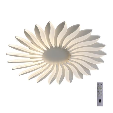 Потолочная светодиодная люстра с пультом ДУ ST Luce Girasole SL836.502.24 4000K (дневной)