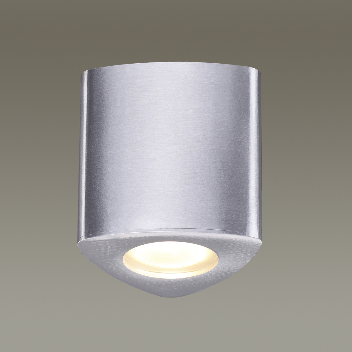 Потолочный светильник Odeon Light Aquana 3573/1C, IP44, 1xGU10x50W, алюминий, металл, стекло - фото 1
