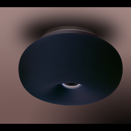 Потолочный светильник Odeon Light Pati 2205/2C, 2xE27x60W, белый, металл, стекло