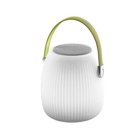 Музыкальный садовый светодиодный светильник с пультом ДУ Favourite Speaker 2128-1T, IP44, LED 3W RGB, белый, зеленый, пластик