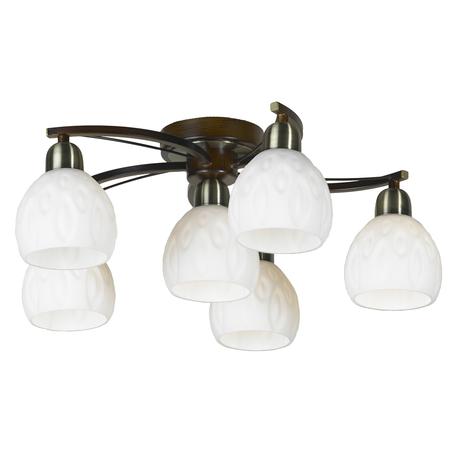 Потолочная люстра Lussole Kstall LSP-0045, IP21, 6xE14x40W, коричневый, белый, металл, стекло