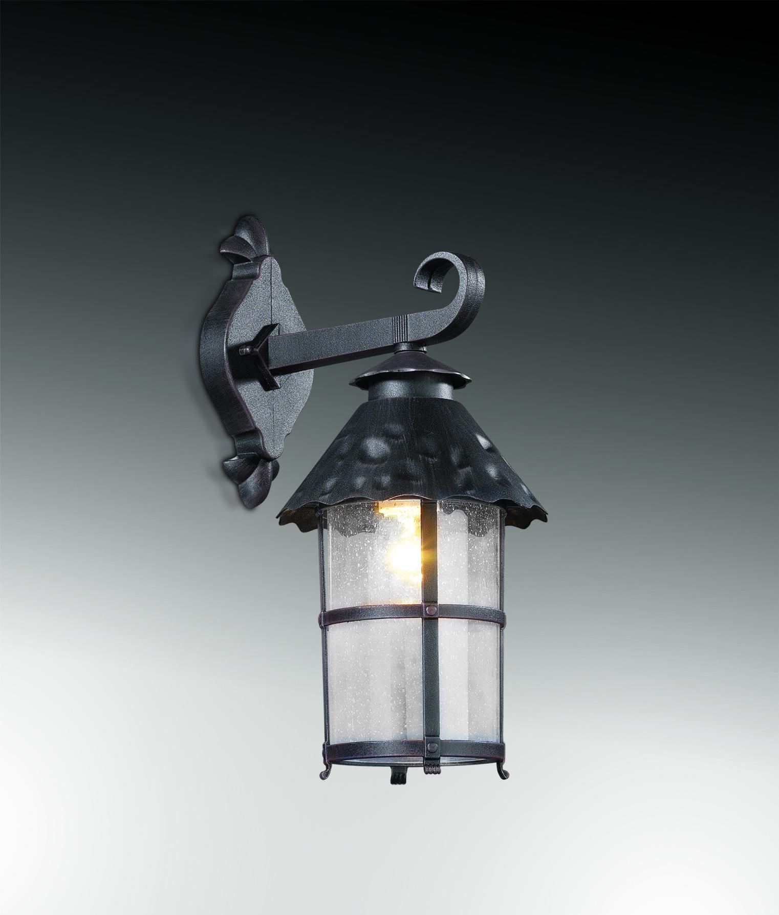 Настенный фонарь Odeon Light Nature Lumi 2313/1W, IP44, 1xE27x60W, коричневый, прозрачный, металл, ковка, металл со стеклом - фото 1