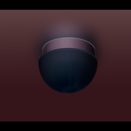 Потолочный светильник Odeon Light Minkar 2443/1B, IP44, 1xG9x40W, хром, белый, металл, стекло
